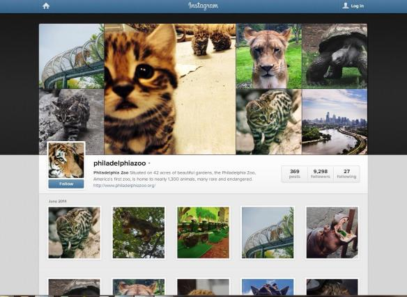 The Philadelphia Zoo is wild about Instagram!