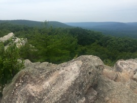 View from Pole Steeple