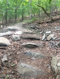 Rocky steps on the hike to Pole Steeple