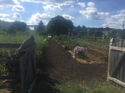 Welcome to Beech Springs Farm, Orrtanna, Adams County, PA