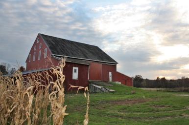 Adams County farm photographed to accompany Adams Alliance press release